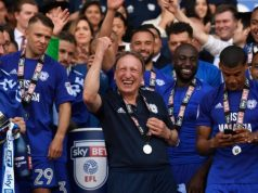 Cardiff City ascendió a la Premier League